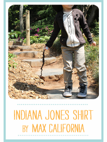 SewingBlocks-2013-SRTP-IndianaJones