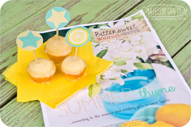 summer thyme-book-ImFeelinCrafty