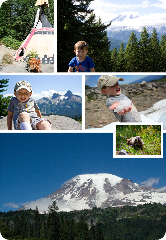 Vacations-MtRainier-ImFeelinCrafty